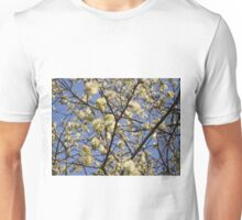 Willow catkins Unisex T-Shirt