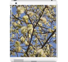 Willow catkins iPad Case/Skin