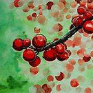 red fruits by Ciobanu Adrian