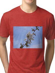 Blossom Tri-blend T-Shirt