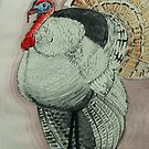turkey by Ciobanu Adrian