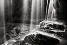 Through the falling - B&W by Michael Howard