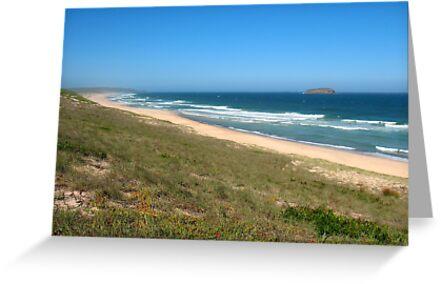 The Wild Beach by Michael John