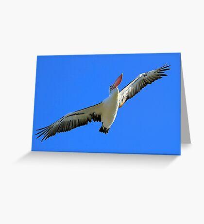 Pelican Airways Greeting Card