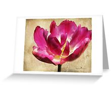 Textured Tulip Greeting Card
