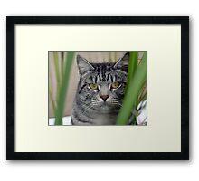 """""""Mia""""  Framed Print"""