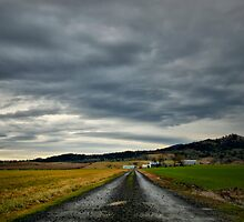 The Road Home by Charles & Patricia   Harkins ~ Picture Oregon
