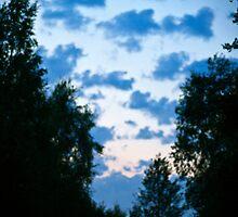 Sky. by tutulele