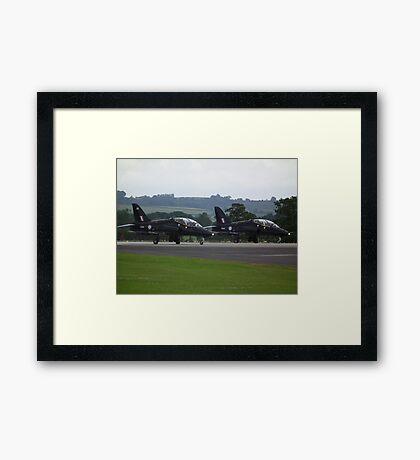 Hawk Pair Framed Print