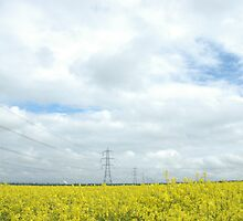 """""""Rapeseed and Towers"""" by Jimmy Deas"""
