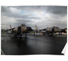 Harrier Pair Poster