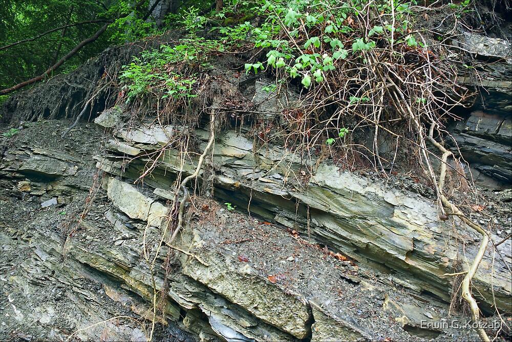 erosion III by Erwin G. Kotzab