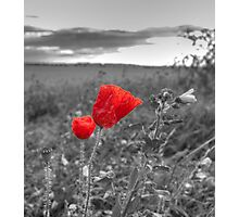 Living colour Photographic Print