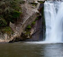Elk River Falls (Color) by Forrest Tainio