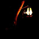 Light of Lampshade by Anil Mehrotra