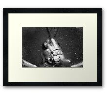 Something at the Window Framed Print