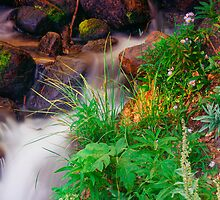 The Water Of Life II by John  De Bord Photography