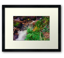 The Water Of Life II Framed Print