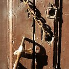 An Old Brown Door by Michele Filoscia