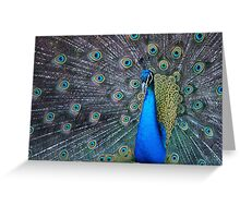 Mister Magnificent Greeting Card