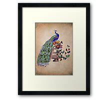 Vintage Peacock Beauty Framed Print