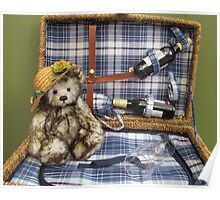 Teddy in a basket Poster