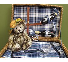 Teddy in a basket Photographic Print