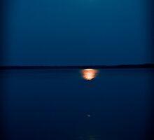 Moon Light by tutulele