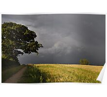 storm over the wheat fields Poster
