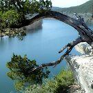 A River Runs Through It by SuddenJim