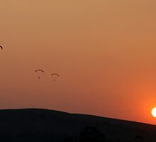 Sunset Sky Divers over Yan Yean  by Pauline Tims