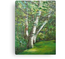Seattle Trees Canvas Print