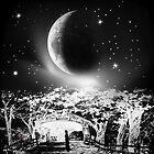 Moonlight Serenade by haya1812