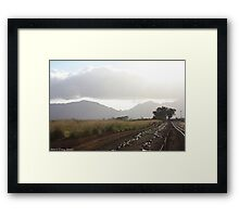 Sunshine, on a cloudy day Framed Print