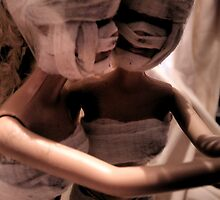 Plastic Surgery Barbie by Liz Gilbert