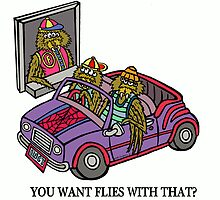 YOU WANT FLIES WITH THAT? by NHR CARTOONS .