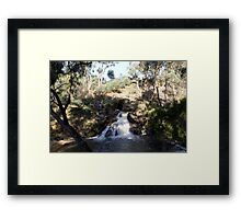 The Blowhole Framed Print