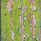Green Peeling Paint #2 by Michele Filoscia