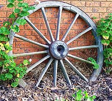 Wagon wheel - handy for plant climber - Kirkstall, Vic. by EdsMum