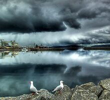 Storm Over Albany by Eve Parry