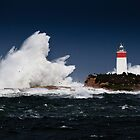 Iron Pot Lighthouse, Tasmania by Doug Thost