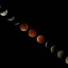 Blood Moon Lunar Eclipse Montage by David Alexander Elder