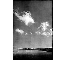 Vol d'oiseau Photographic Print