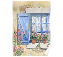 Blue shutters and hollyhocks Poster