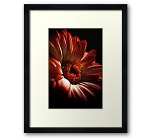 A Floral Red Head Framed Print