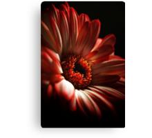 A Floral Red Head Canvas Print