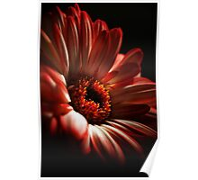 A Floral Red Head Poster