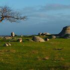 Morning Glow, Dog Rocks by Hicksy