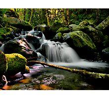 Wow (Canyon Creek) Photographic Print