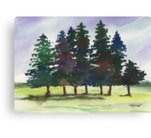 Piney Woods Canvas Print